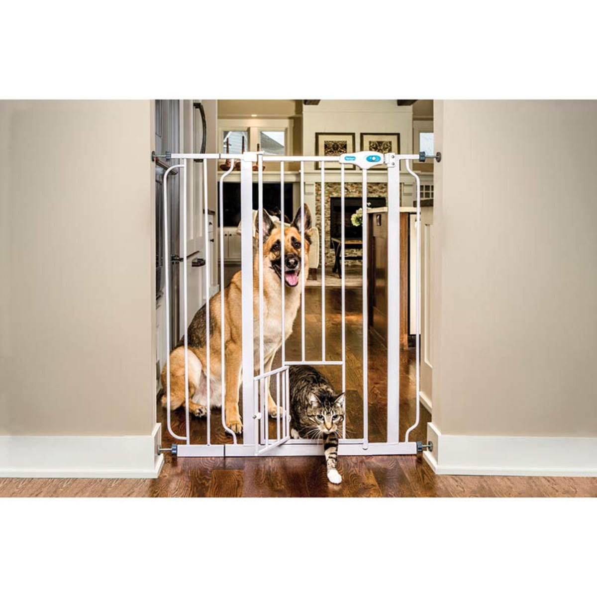 Dog Gate with Cat Gate Opening