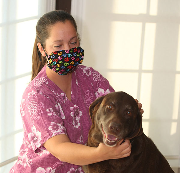 Groomer wearing a Breathe Healthy face mask