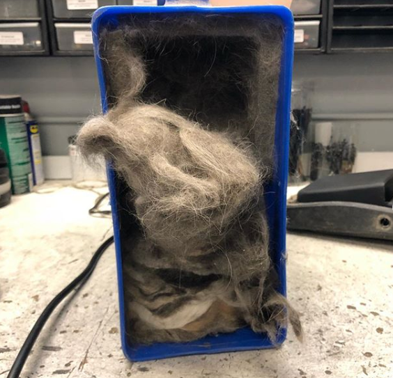 Grooming dryer overdue for maintenance has hair and fur spilling out of it