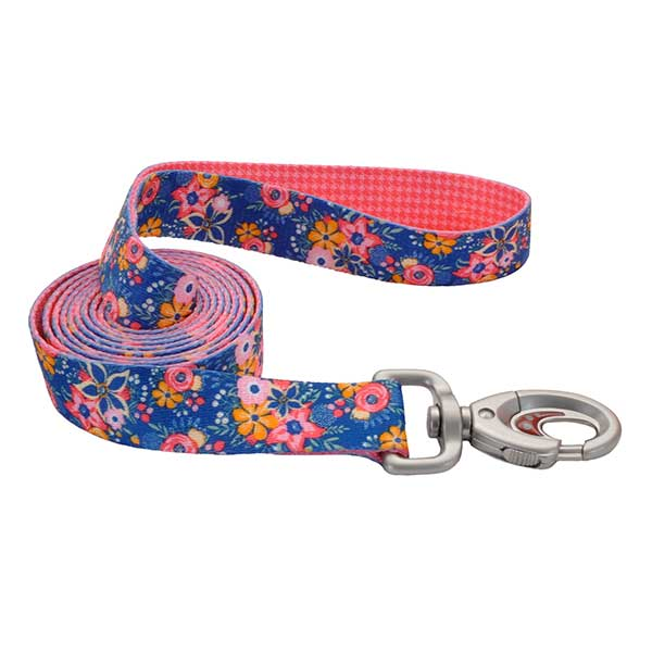 Leads & Leashes