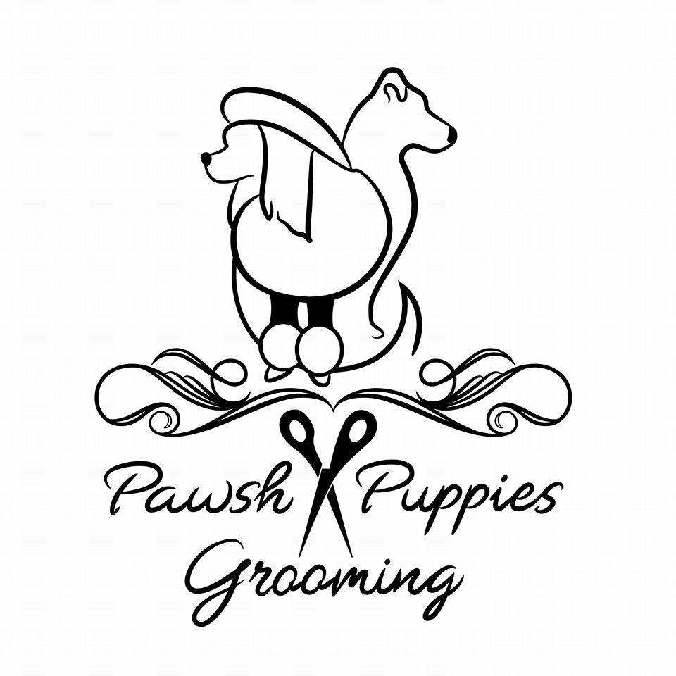 Pawsh Puppies Grooming
