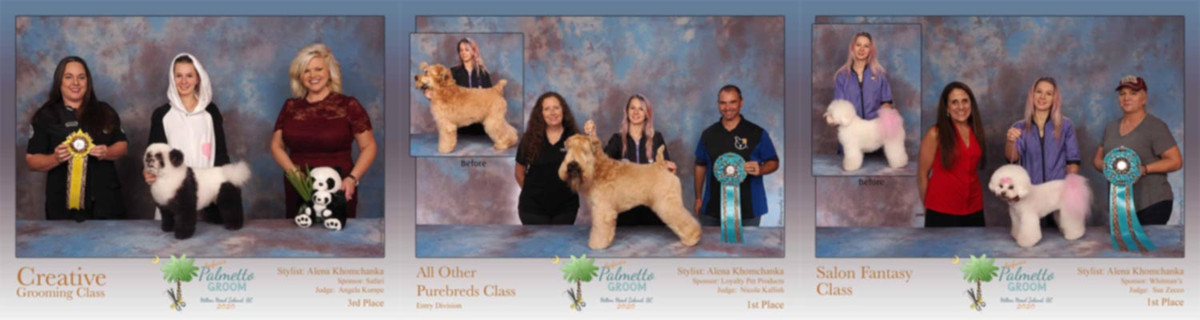 Helen Khom and her various wins in the world of competitive grooming