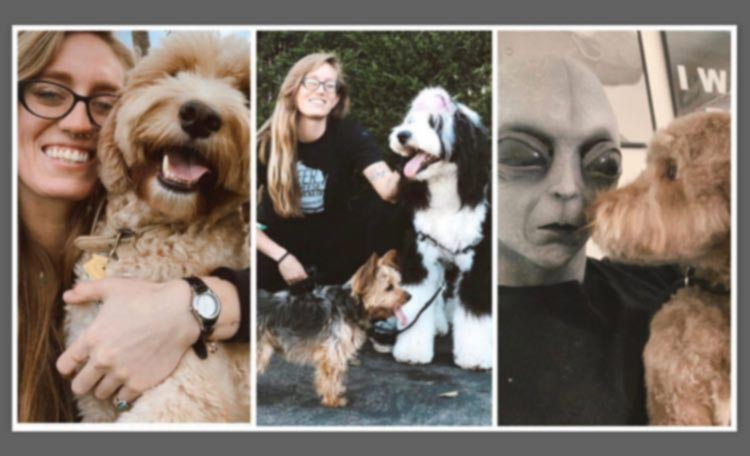 Tasha Torres and the doodles she grooms
