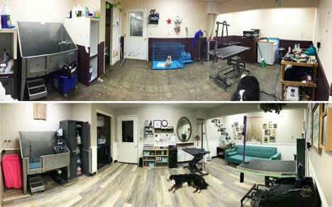 Britt Johnson's before and after shop pics
