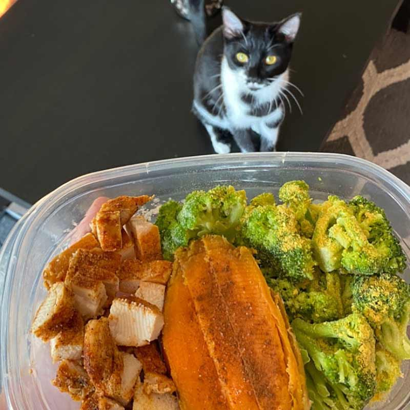 Chicken, Sweet Potatoes, and Broccoli