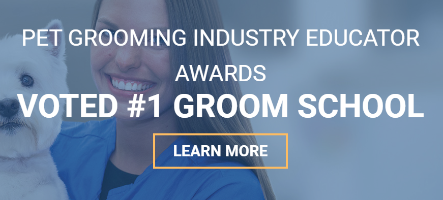 Paragon Distance Learning for Groomers - Voted #1 Groom School