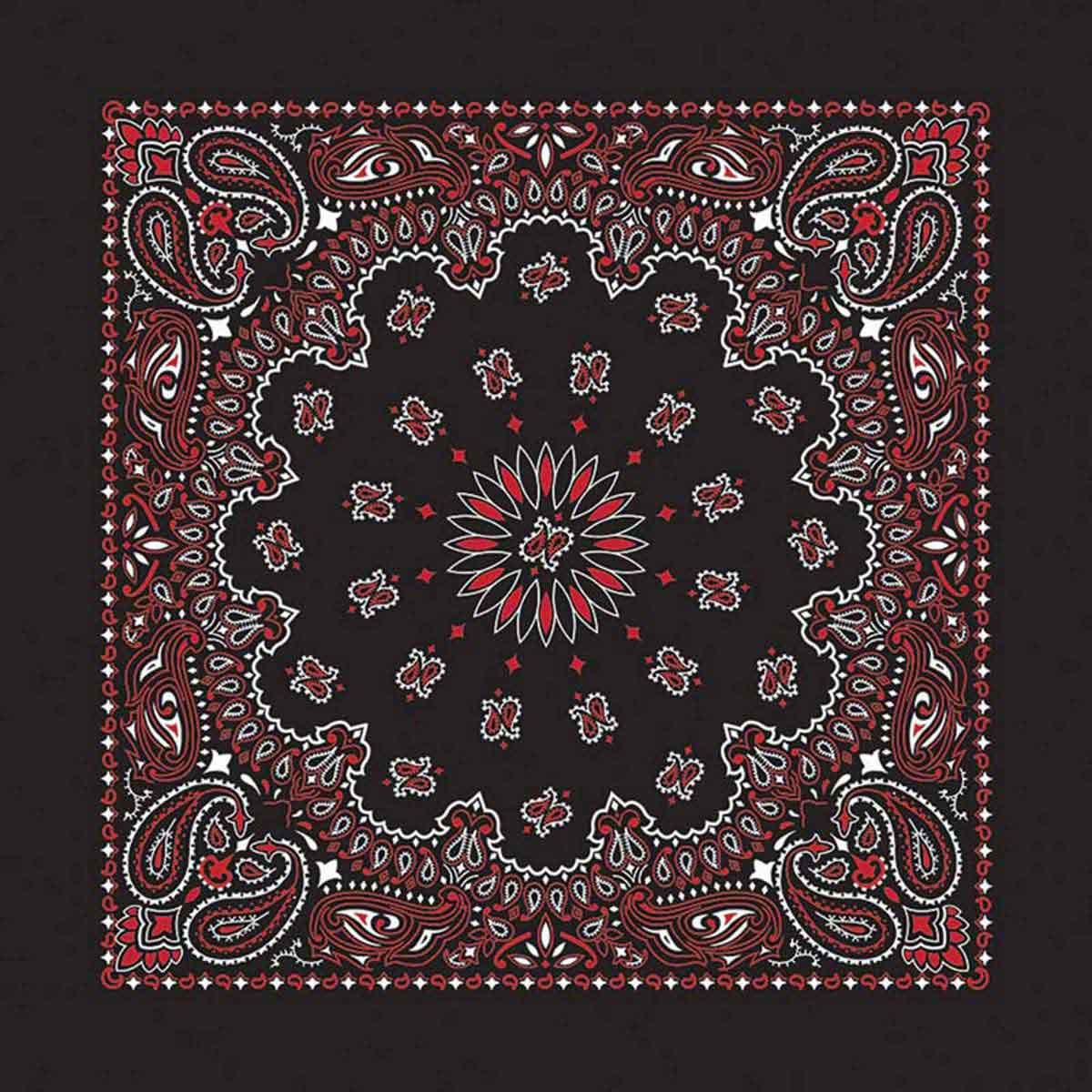 Black & Red Paisley Bandanna for Dogs by Fancy Finishes