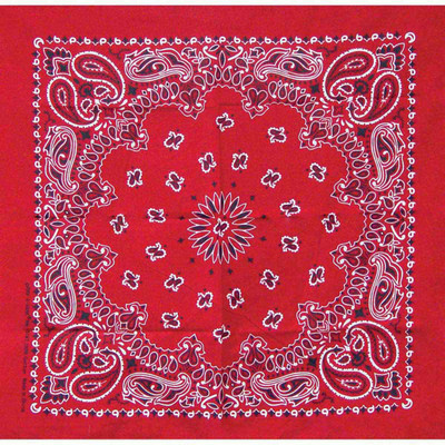 Poly/Cotton Blend Red Paisley Bandanna for Dogs by Fancy Finishes