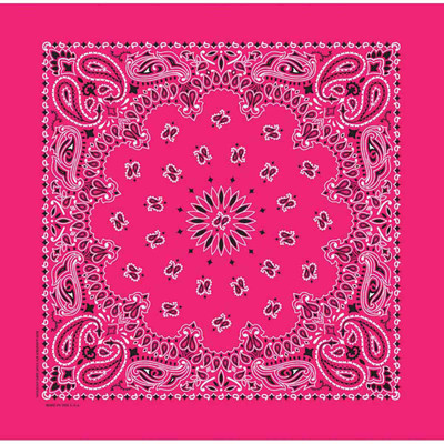 Fancy Finishes Square Poly/Cotton Hot Pink Paisley Bandanna for Dogs and Pets