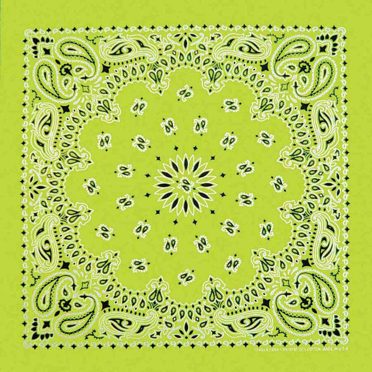 Neon Green Paisley Bandanna for Dog Grooming at Ryan's Pet Supplies