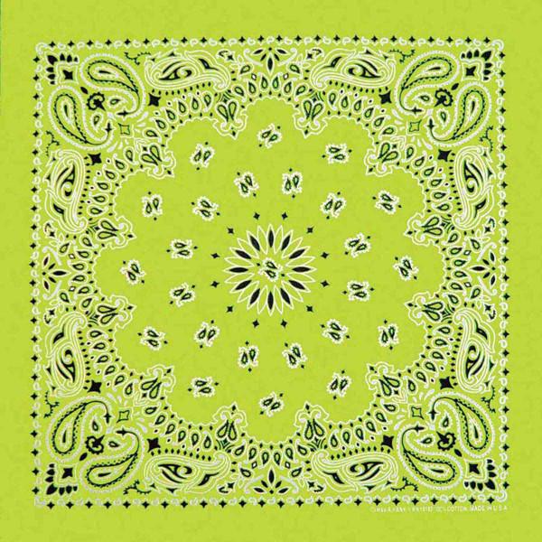 Neon Green Paisley Bandanna for Dog Grooming at Ryan's Pet Supplies