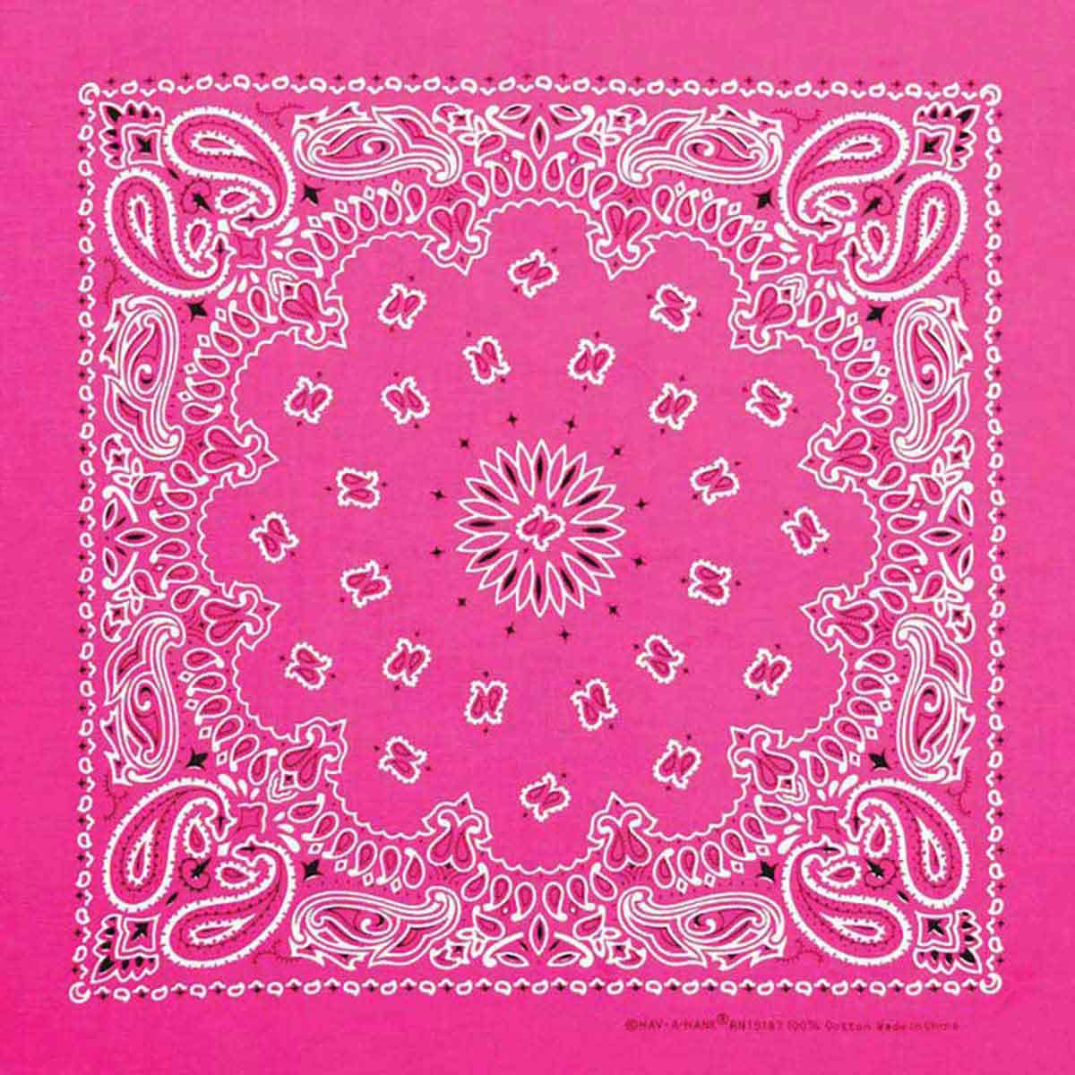 Neon Hot Pink Paisley Bandanna for Dog Grooming available at Ryan's Pet Supplies
