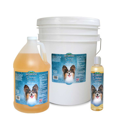 Bio-Groom Protein Lanolin Tearless dog Shampoo