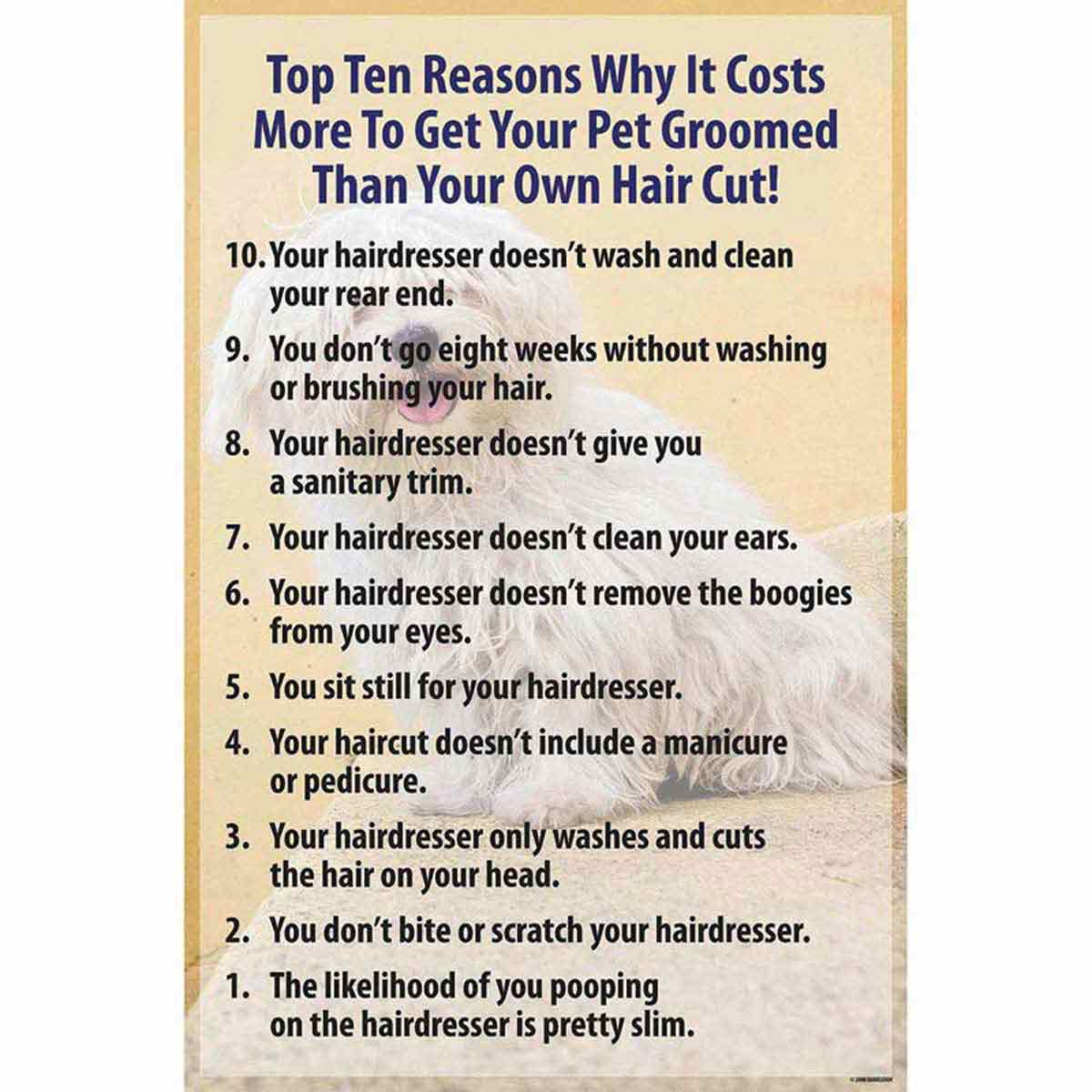 Professional Groomer Top 10 Reasons Why it Costs More To Get Your Pet Groomed Than Your Own Hair Cut Poster and Frame 8.5 x 11