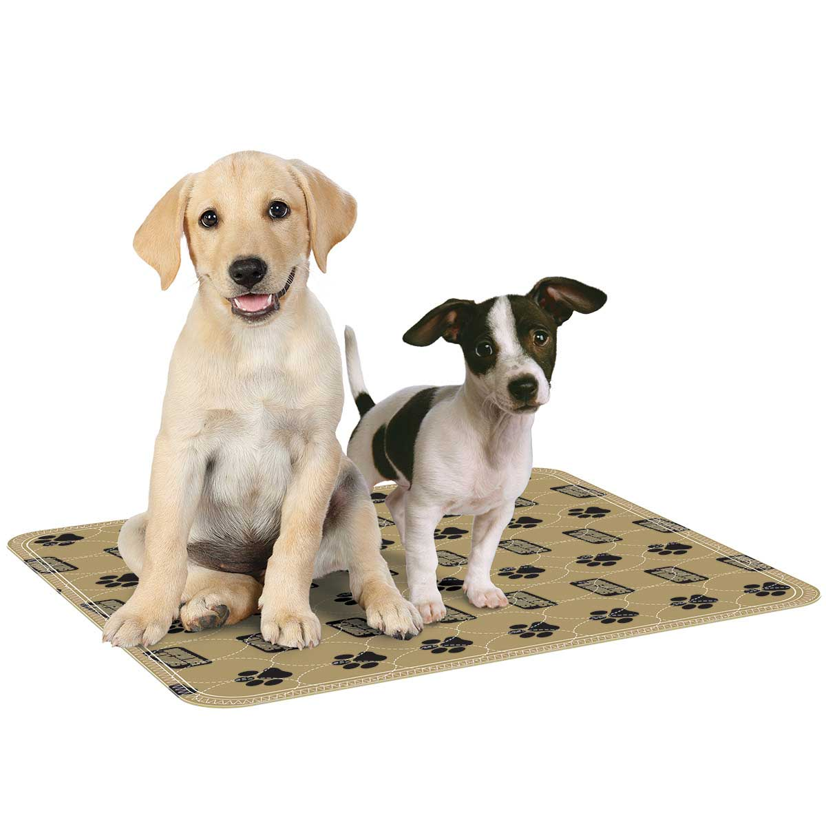 Simple Solution Large Reusable absorbent pad for dog Training crates 2 Pad Pack