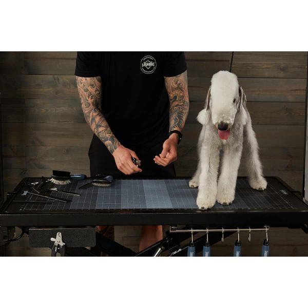 Blackworks Stealth Table Elite - groomer with dog on premium pet grooming table