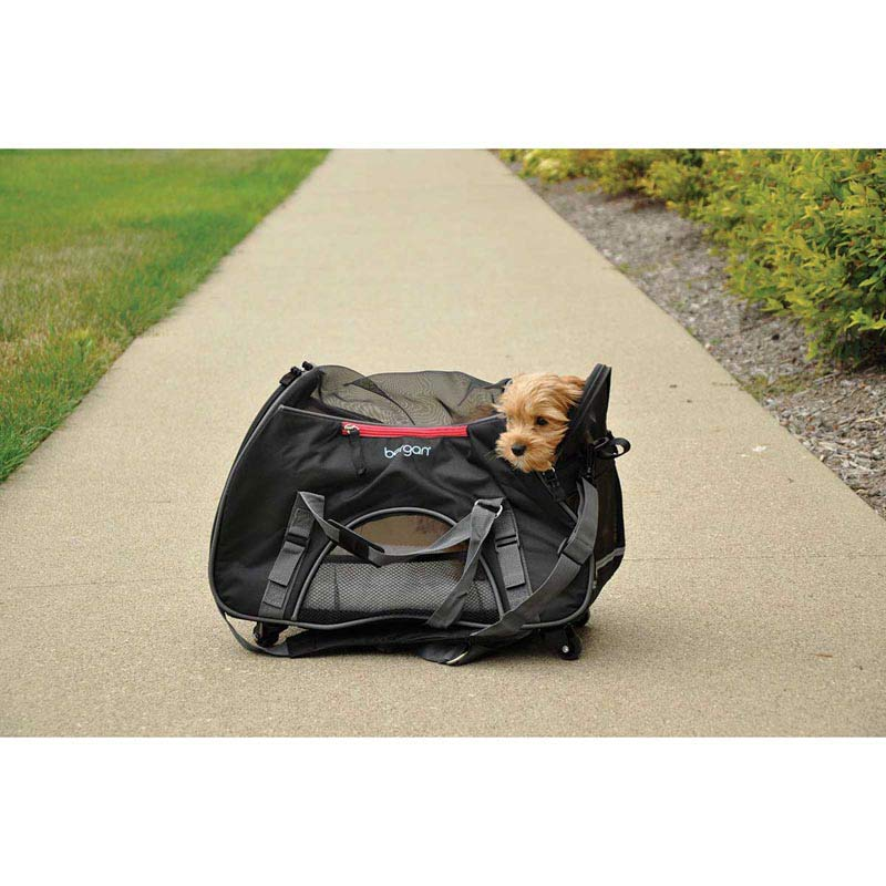 "Example of Dog in Bergan Wheeled Comfort Carrier 13""L X 19.75""W X 10.75""D"