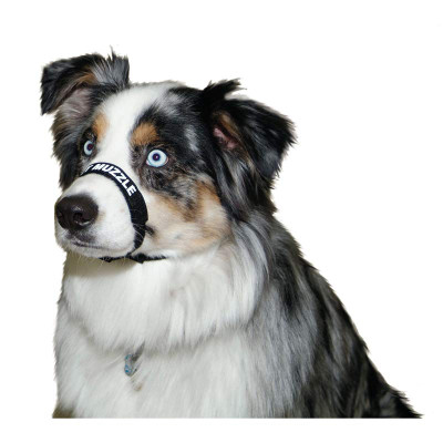 """Large Black Comfort Muzzle for Dogs 16""""-24"""""""