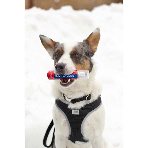 Coastal Behavior Coach 1.5 oz training tool for dogs