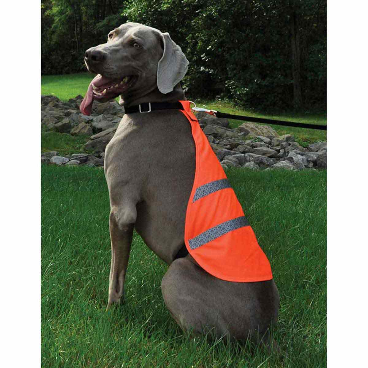 Side View Coastal Reflective Safety Vest for Large Dogs