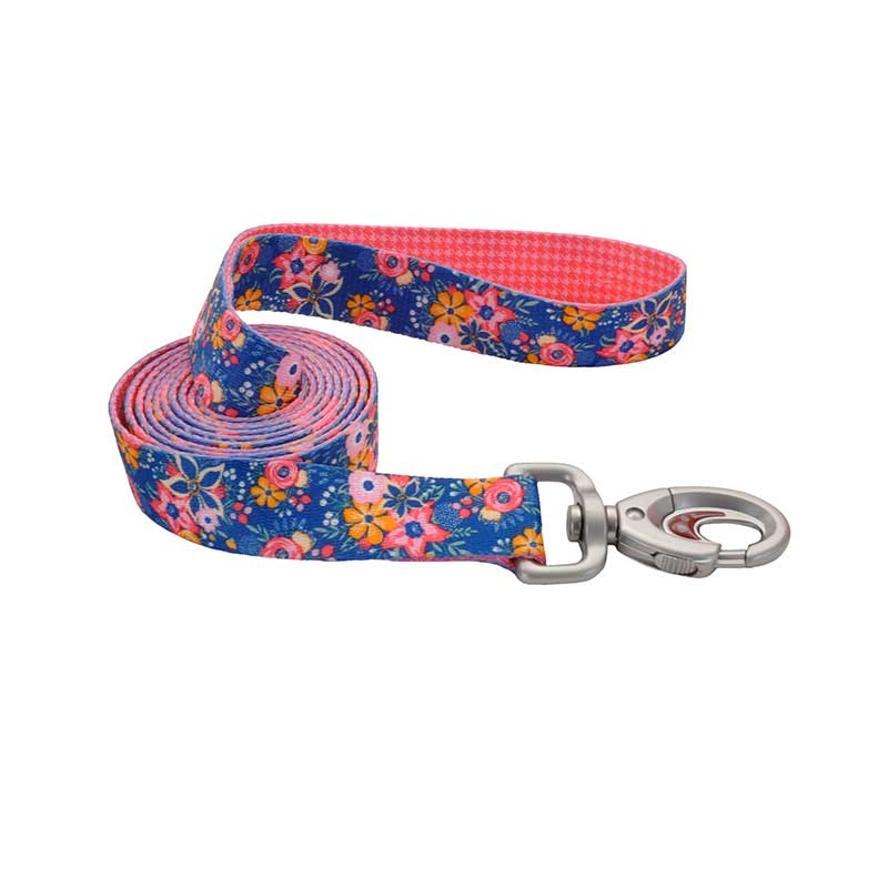 Coastal Sublime Dog Leash - 1 inch by 6 feet