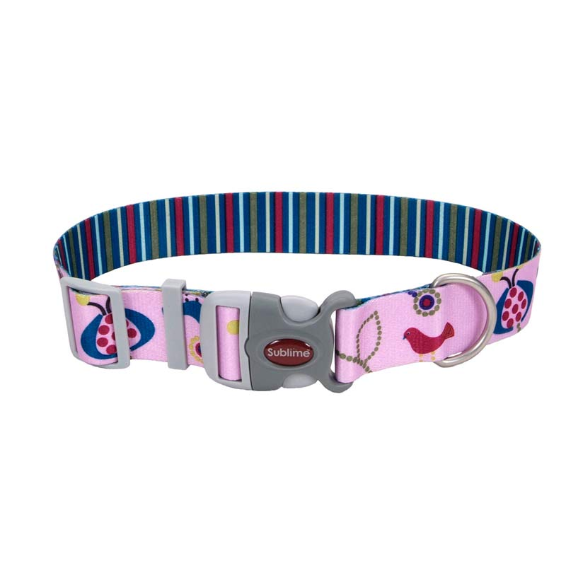 Coastal Sublime Adjustable Dog Collar - 1.5 inch by 18-26 inches - Bird/Stripe Pattern