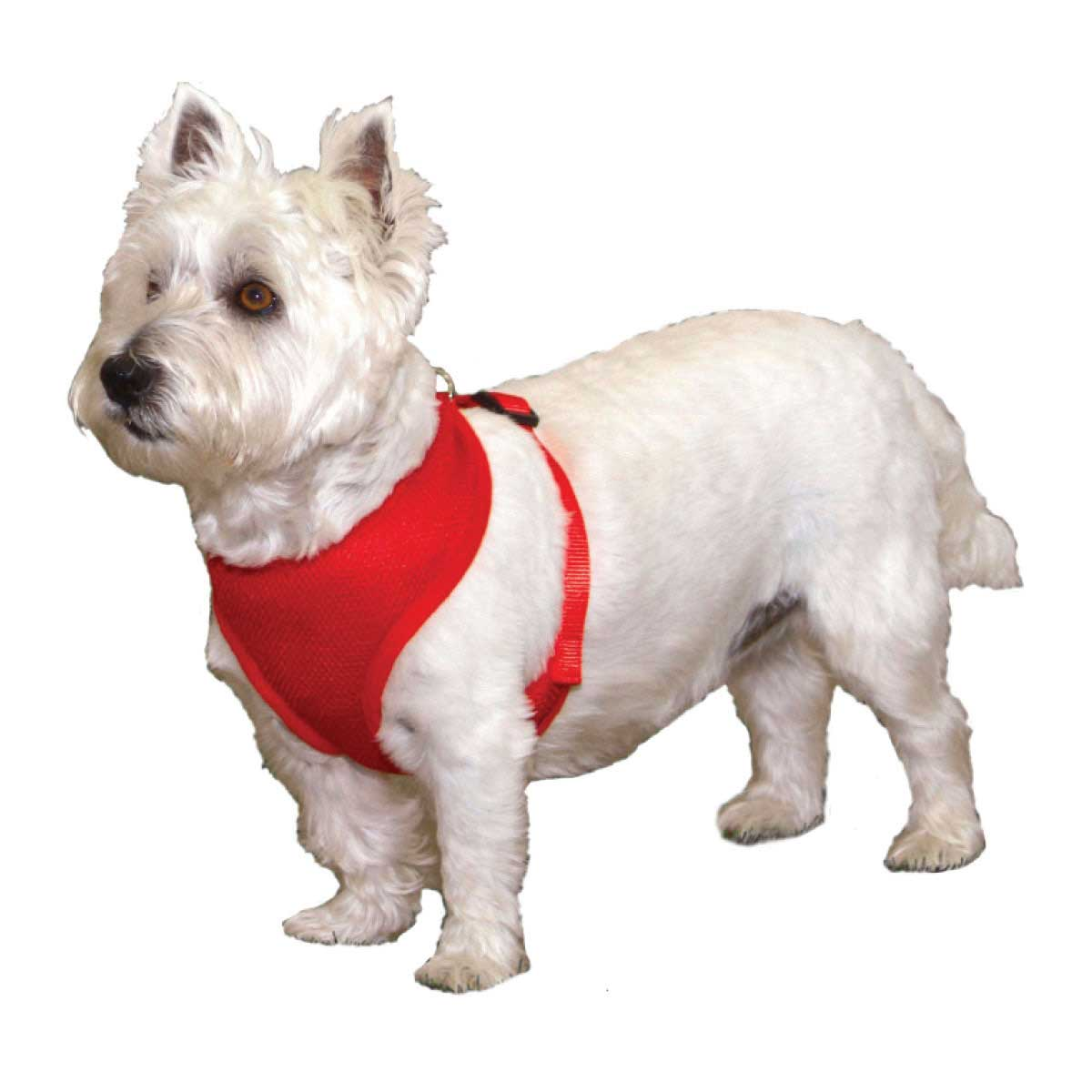Coastal Comfort Soft Nylon Harness XX-Small 3/8 inch