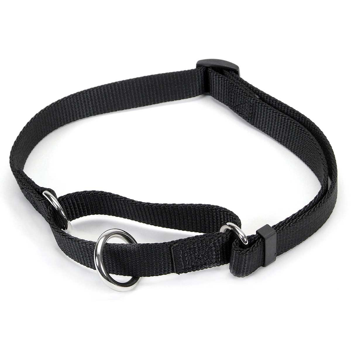"Coastal 3/4"" No Slip! Martingale Collar Example"