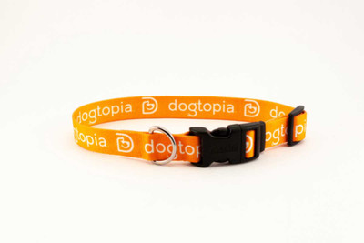 Dogtopia Dog Collar 1 inch?resizeid=5&resizeh=400&resizew=400