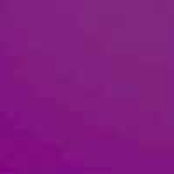 120v Purple Chris Christensen Kool Dry Pup Dryer