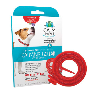 Medium Calm Paws Calming Collar for Dogs outside of Box