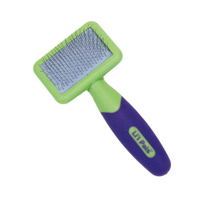 Li'L Pals Slicker Brush for Grooming Small Dogs available at Ryan's Pet Supplies