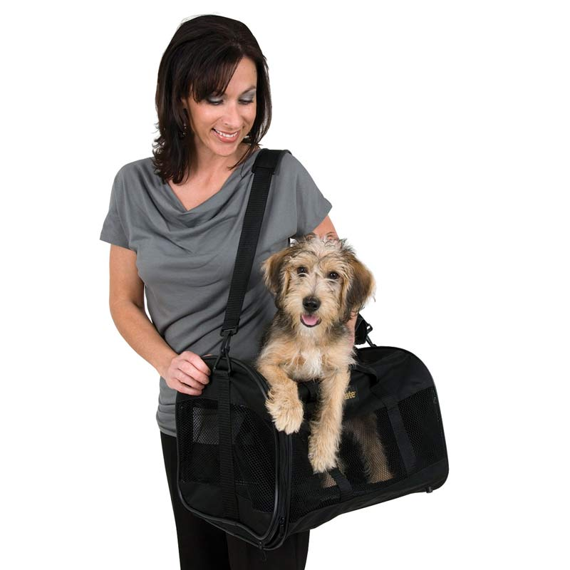 Woman Holding Petmate Soft Sided Kennel Cab Large with Dog