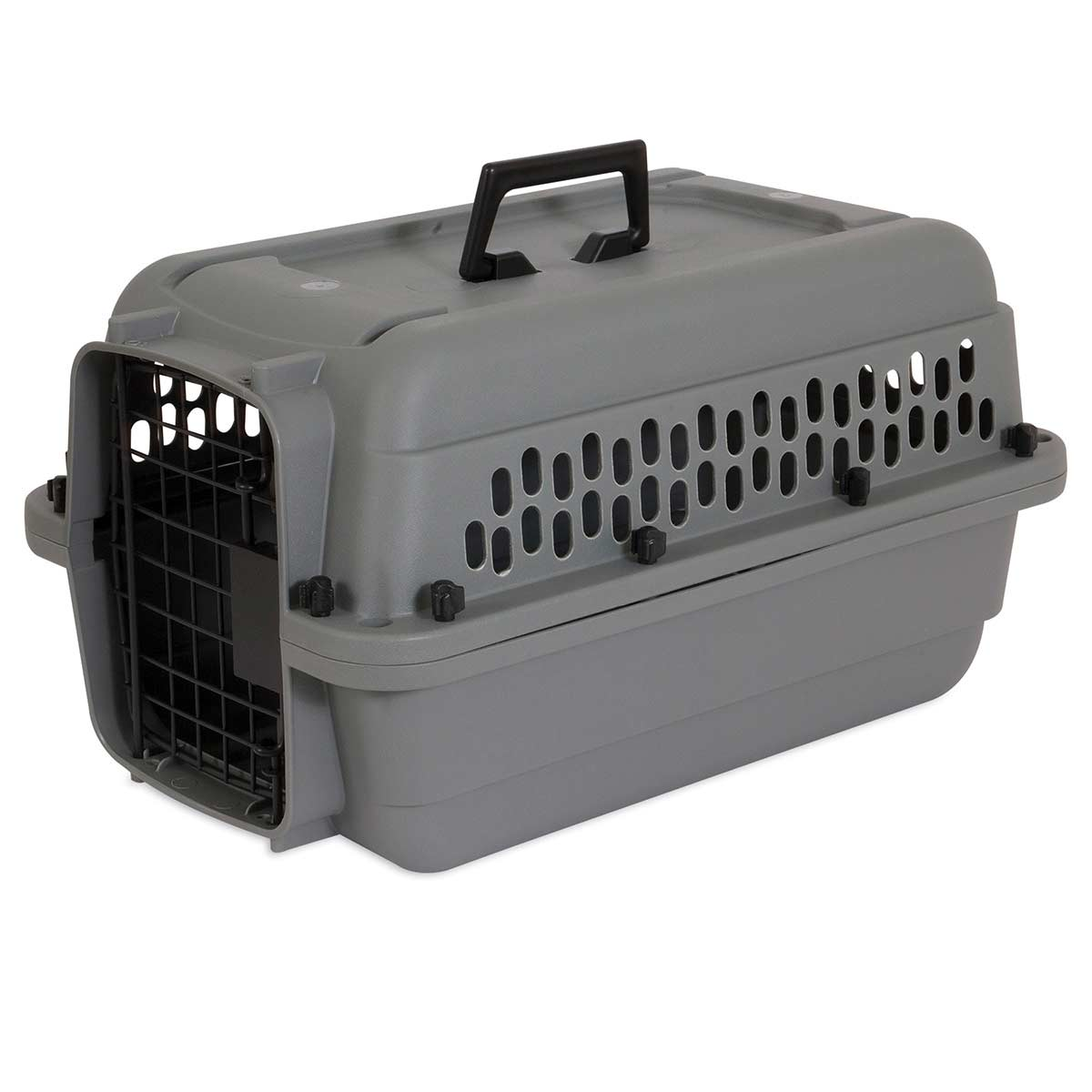 Aspen Pet Traditional Travel Kennel - 20 inches