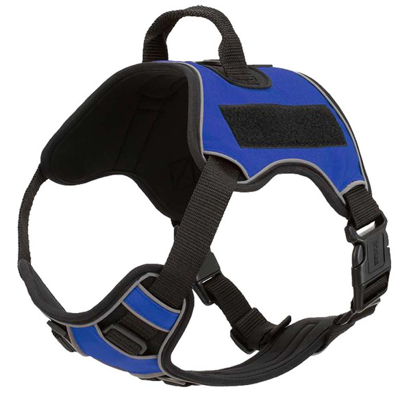 Blue Medium Quest Multipurpose Dog Harness