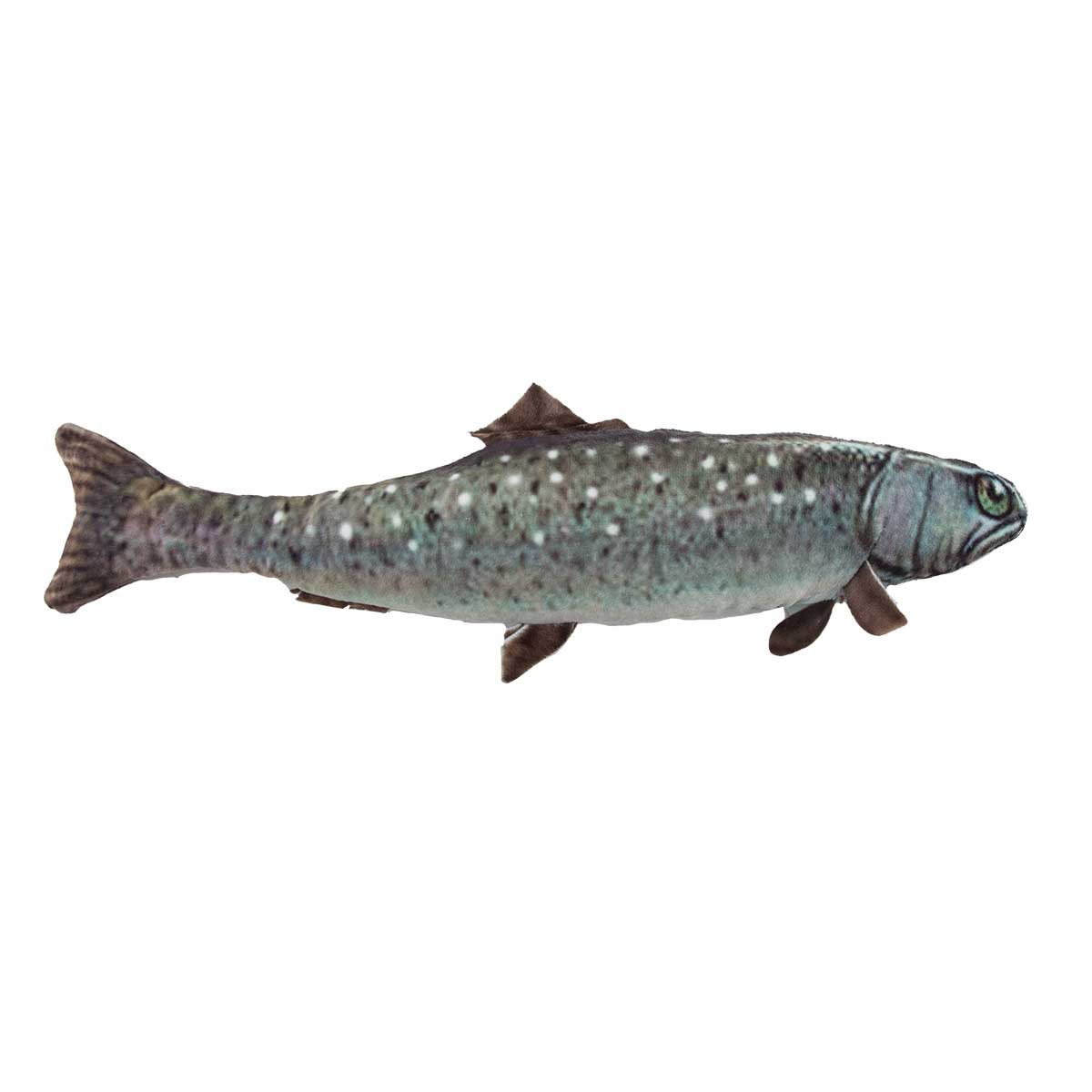 Dawgeee Toy Plush Sea Trout 15 inch Dog Toy available at Ryan's Pet Supplies