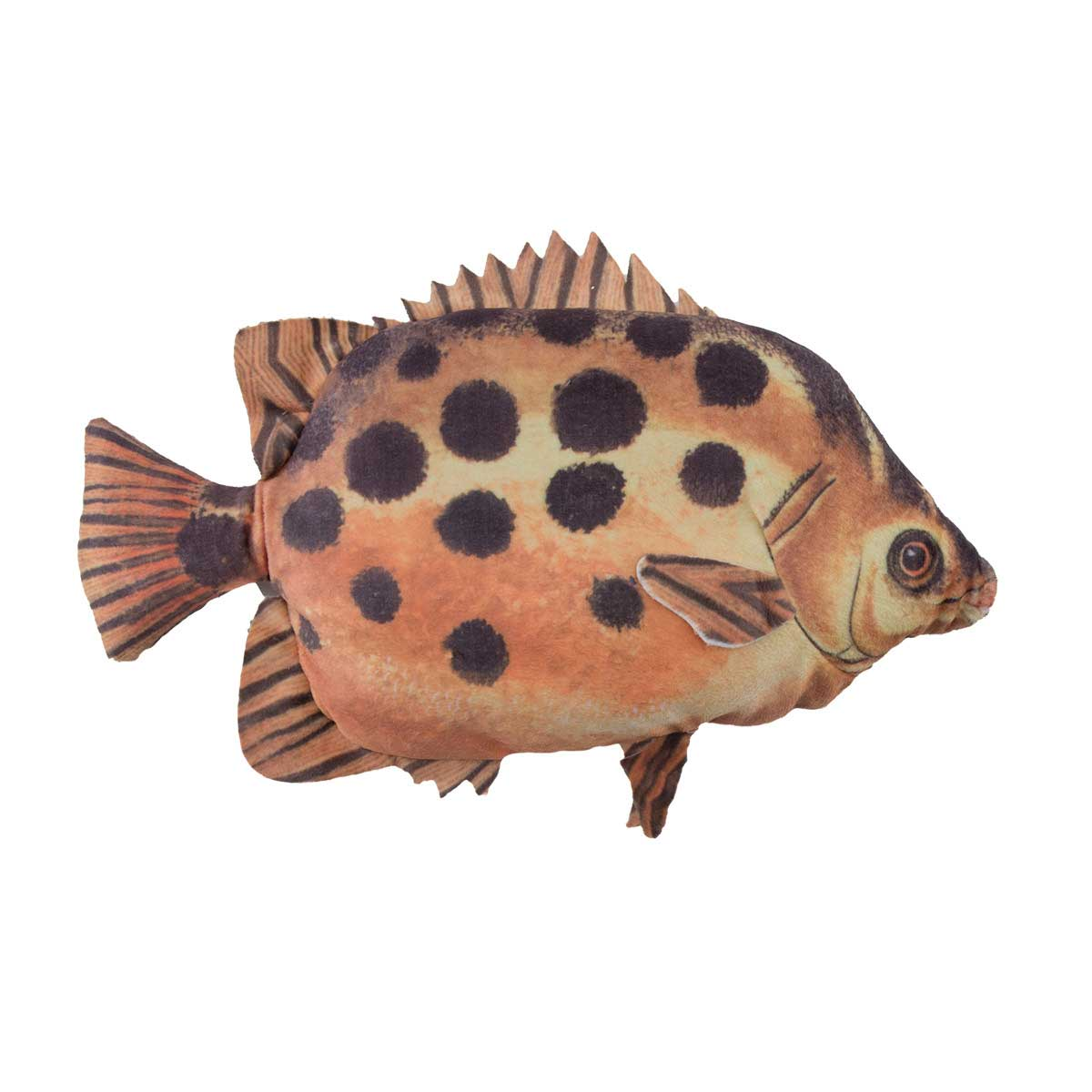 Dawgeee Toy Spotted Fish - 12 inch dog toys