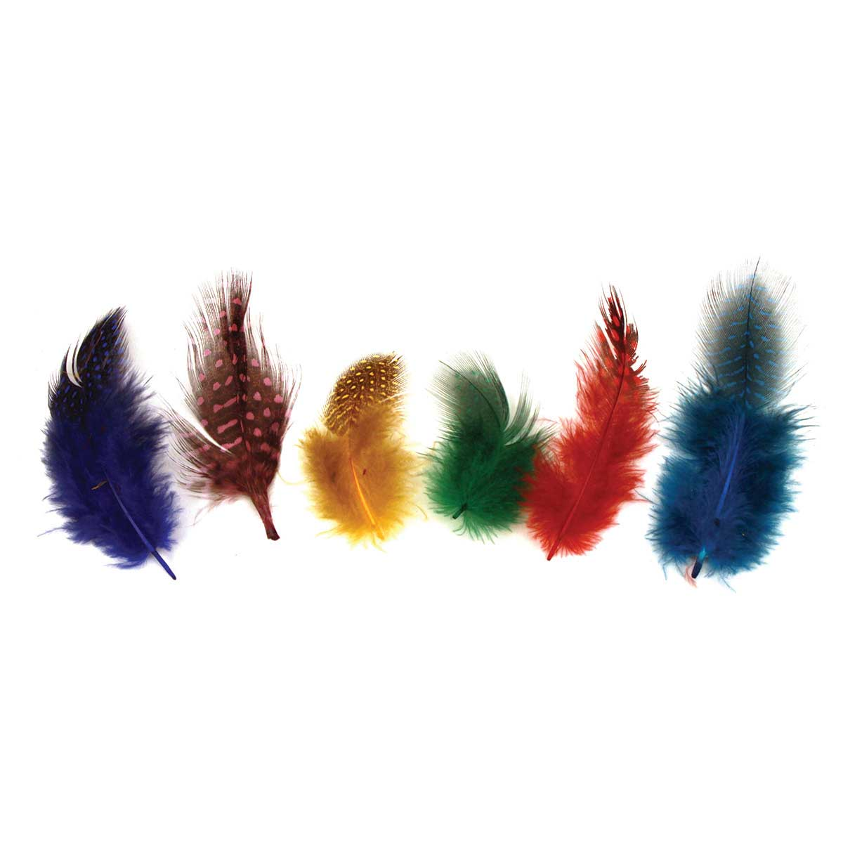 Guinea Feathers: Pack of 50 Assorted, Vibrantly Colored Fashion Feathers for Dog Groomers