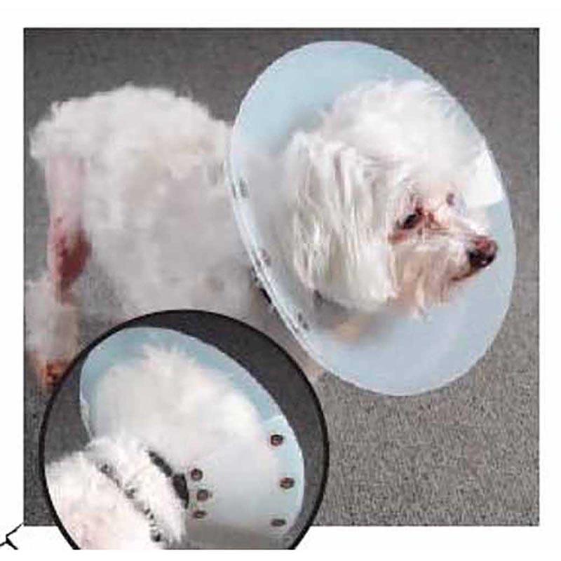 Set Of 5 KVP Saf-T-Shield Elizabethan Collars - Various Sizes - for Multiple Dog Sizes