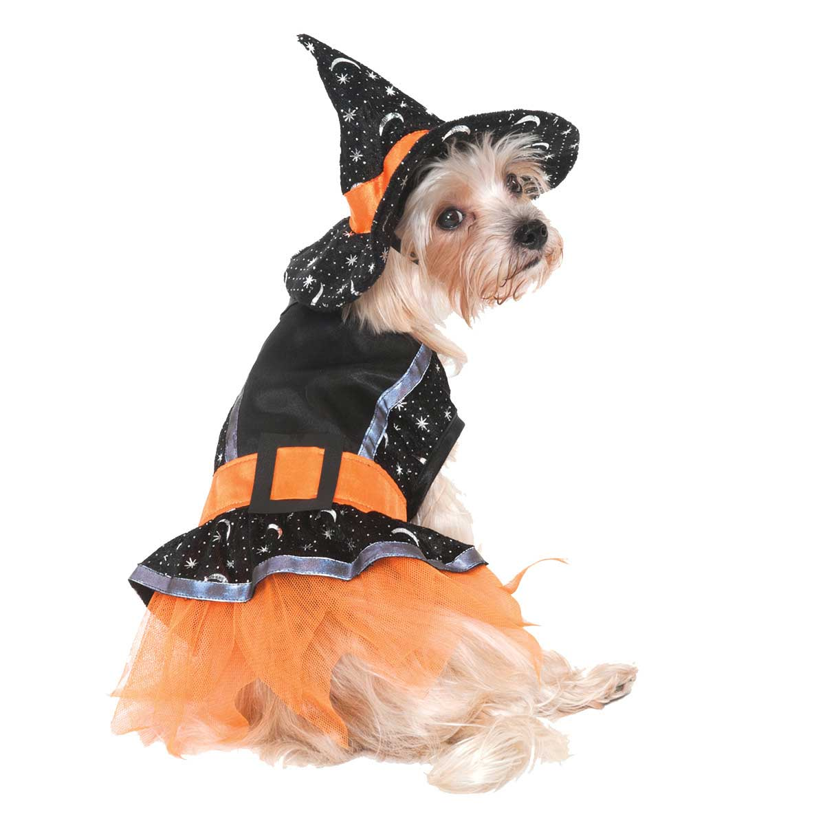 X Small Witch Costume for Dogs