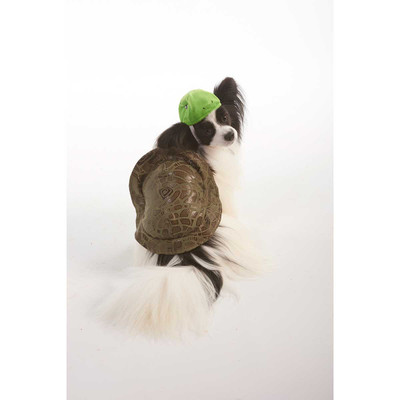 XS-Small Turtle Costume for Dogs