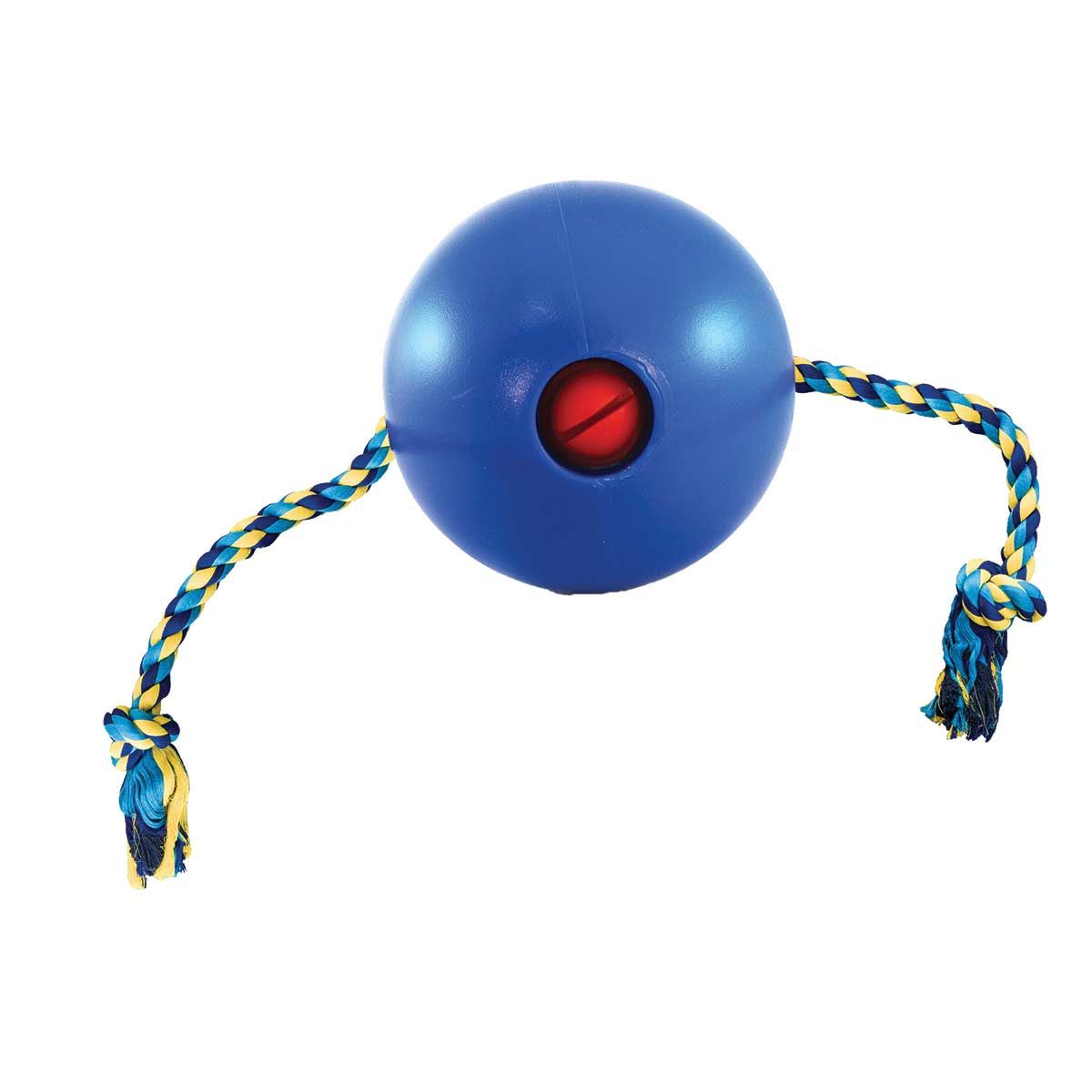 Small Blue Tuggo Dog Toy for Water or Land at Ryan's Pet Supplies