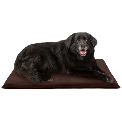 Dog laying on Large FurHaven Suede Orthopedic Mat Espresso