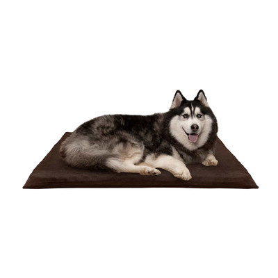 Dog laying on Espresso XL FurHaven Suede Orthopedic Dog Mat