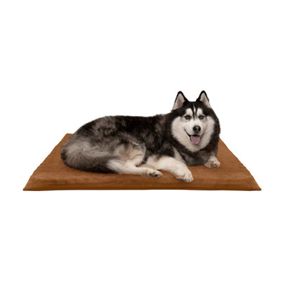 Dog on Camel XL FurHaven Suede Orthopedic Mat