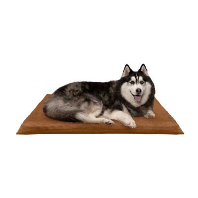 Dog on Camel XL FurHaven Suede Orthopedic Mat