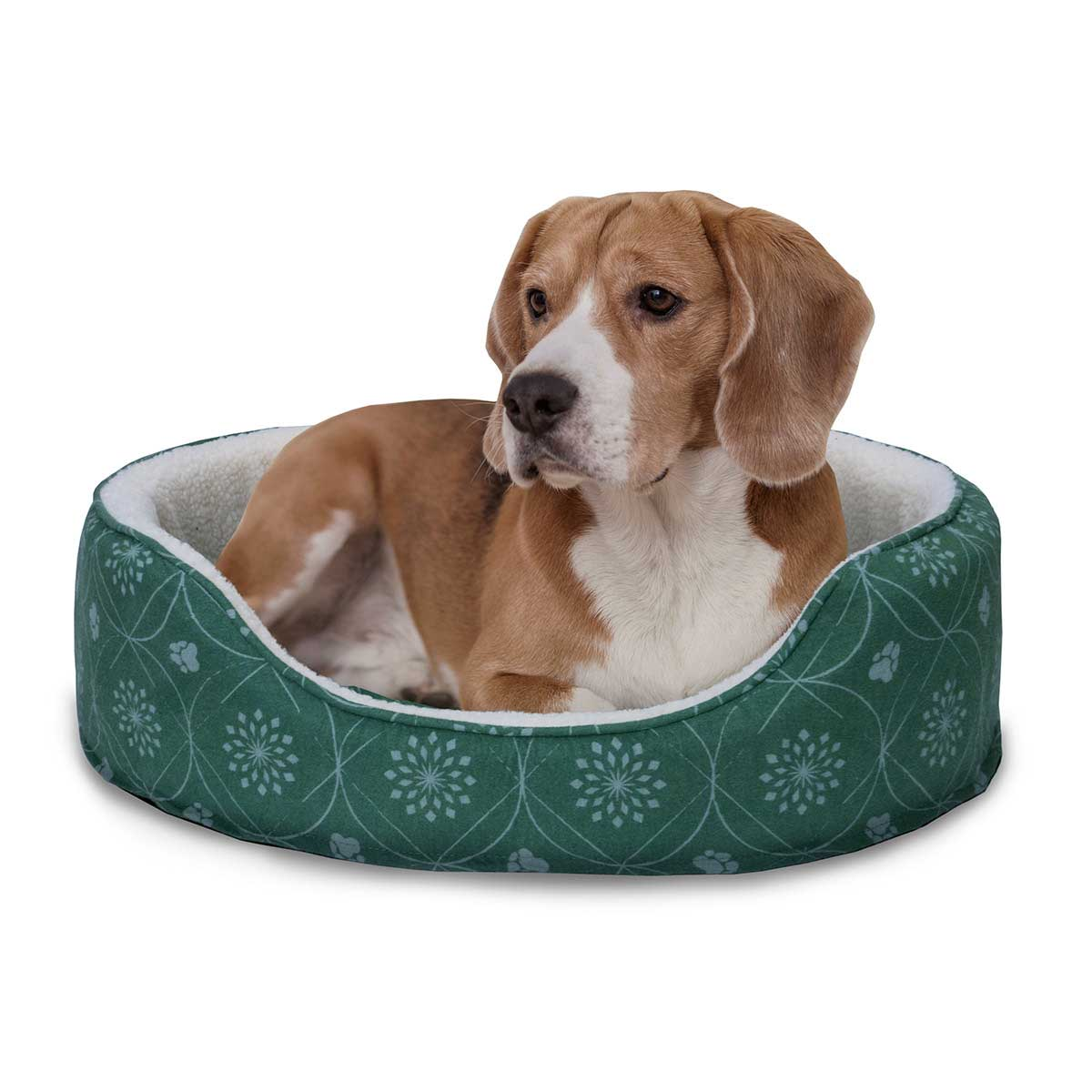 Dog Laying in FurHaven Jade Green Nap Paw Print Decor Flannel Oval Bed - 21 inches by 26 inches