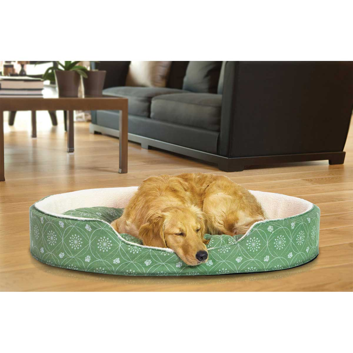 Sleeping Dog in FurHaven Nap Paw Print Decor Flannel Oval Jade Green - 26.5 inches by 30 inches