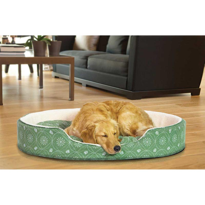 Dog passed out in FurHaven Nap Paw Print Decor Flannel Oval Jade Green Pet Bed - 29 inches by 42 inches