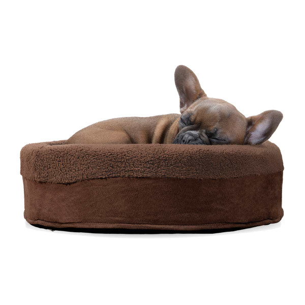 Dog sleeping in Furhaven Espresso Snuggle Terry Cup Pet Bed